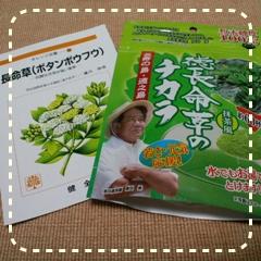 勇田薬草園の長命草粉末1.JPG