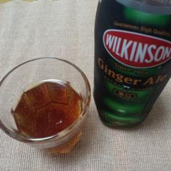 ウィルキンソンのジンジャーエール1.JPG