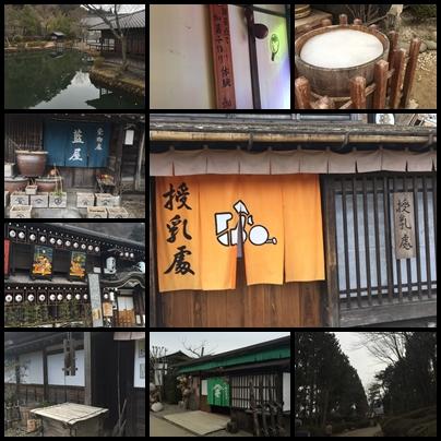江戸村風景.jpg